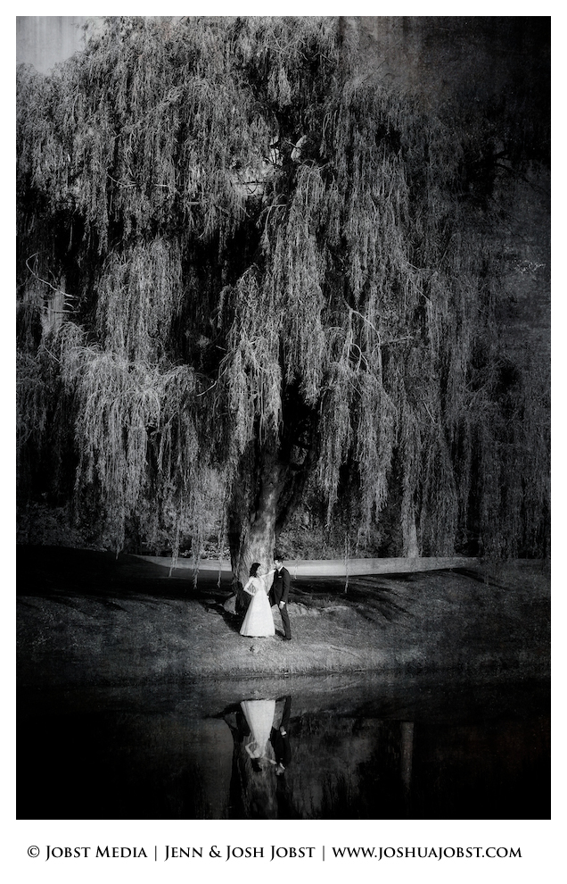 Indian Wedding Photographers Michigan quite an amazing shot below a willow tree that seems to be happy because of the bride and groom below posing and reflecting in the water below in the awesome black and white